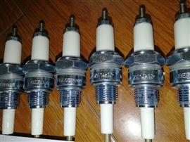 ZE18-12-A1相互发展之BERU电极ZE18-12-450A1