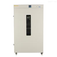 DHG-5系列300℃立式鼓风干燥箱