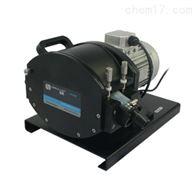 保定雷弗工业智能型蠕动泵2×PL48泵头