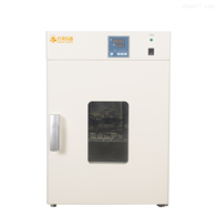 DRX系列干烤灭菌器净化干燥箱