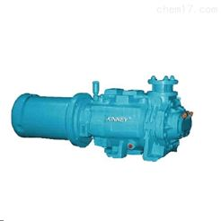 凯尼系列美国SDV2700泰悉尔螺杆泵维修
