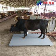 SCS-2t带围栏地磅,2吨称牛用电子秤