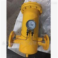 RGL燃气桶型过滤器