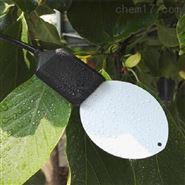 叶面温湿度传感器报价