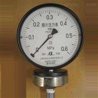 Y-100NF耐腐膜片压力表