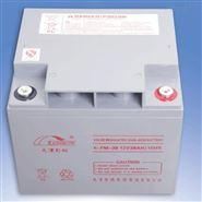彩虹/RAINBOW蓄电池6-CNJ-200 12V200AH环保