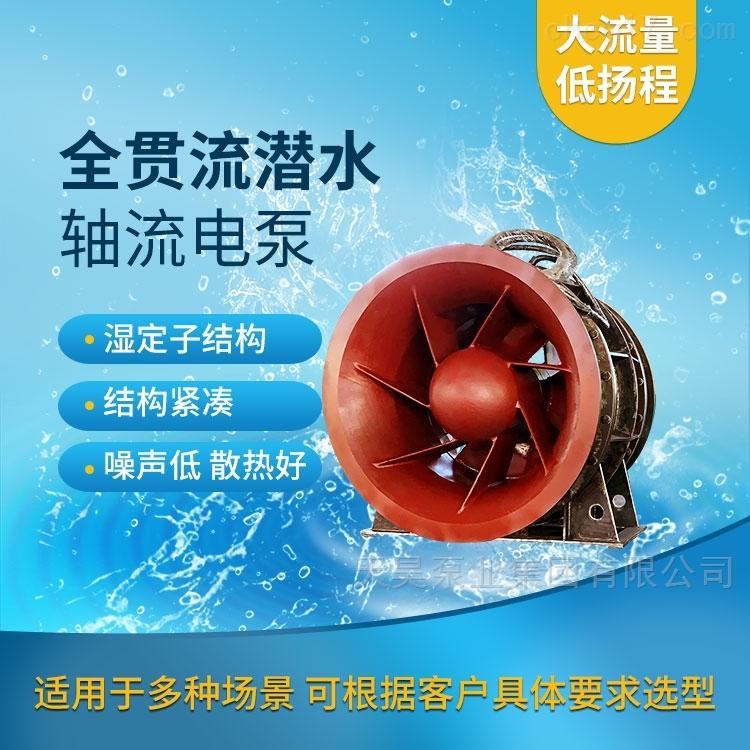 抗洪抢险用1200QGWZ全贯流潜水电泵水力模型