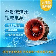 自耦式安装QGWZ全贯流潜水电泵厂家价格