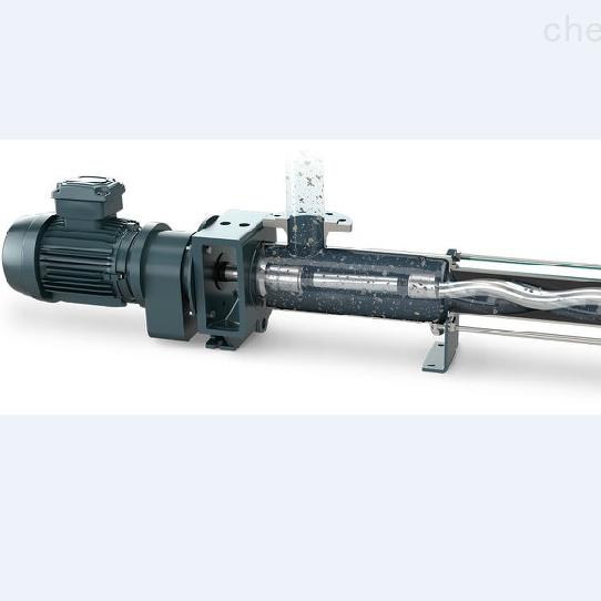 耐驰 直联型泵
