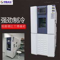青皮铜测试高低温老化试验箱工业恒温恒湿机