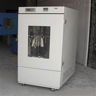 QSYP-250上海药品稳定性试验箱厂家