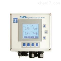YSI溶解氧检测仪