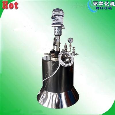 GSH定制50ML高温高压不锈钢反应釜