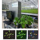 DJ-PG01植物表型与生长参数协同监测系统