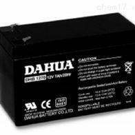 DHB1223大华蓄电池12VDHB1223销售正品
