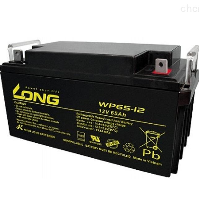 LONG广隆蓄电池WP65-12全新正品