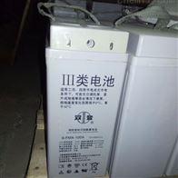 12V100AH双登储能蓄电池6-FMX-100A