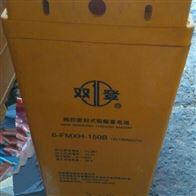 12V150AH双登蓄电池6-FMXH-150B代理商