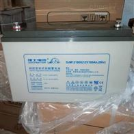 12V100AH理士蓄电池DJM12100S现货包邮