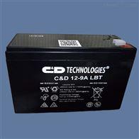 12V9AH大力神蓄电池C D12-9A LBT提供全新正品