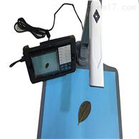 LAM-C智能拍照式叶面积测定仪