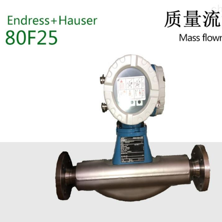 e+h小流量 80A质量流量计
