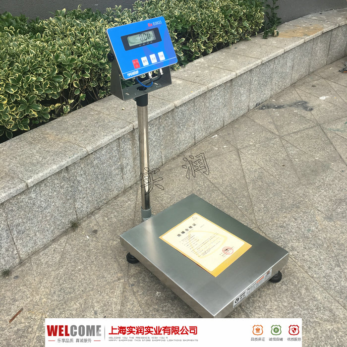 100公斤防爆电子秤
