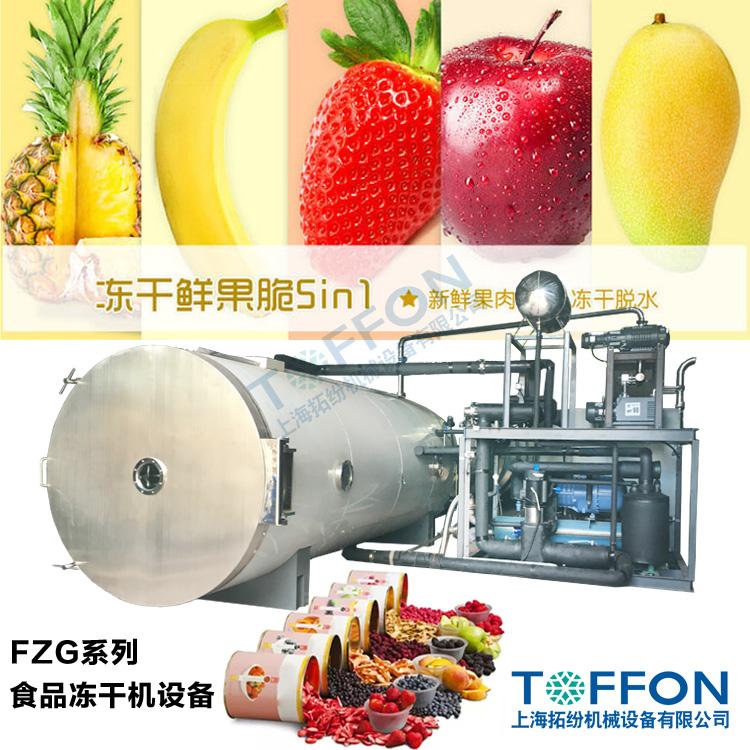 大型水果冻干机