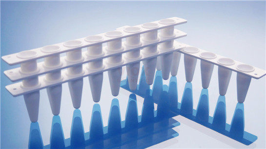 本生生物PCR八联管
