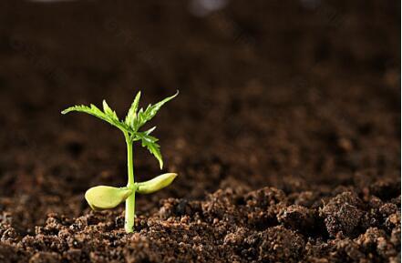 土壤检测仪器有哪些?