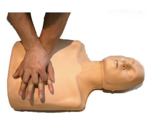 CPR急救假人