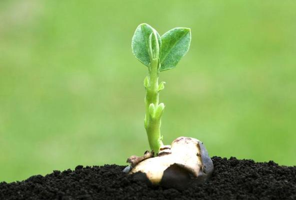 土壤成分测试仪价格