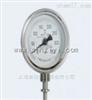 WSS301上仪三厂WSS301径向型双金属温度计