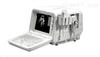 D3 VETD3 VET 兽用全数字超声诊断系统