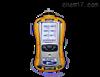 PGM-6208美国华瑞MultiRAE 2六合一气体检测仪
