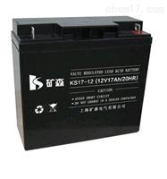 矿森蓄电池KS17-12 12V17AH应急电池参数